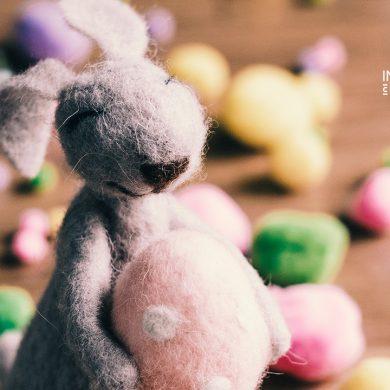 Ovos de Páscoa de chocolate com Chá BIO – Combinação perfeita